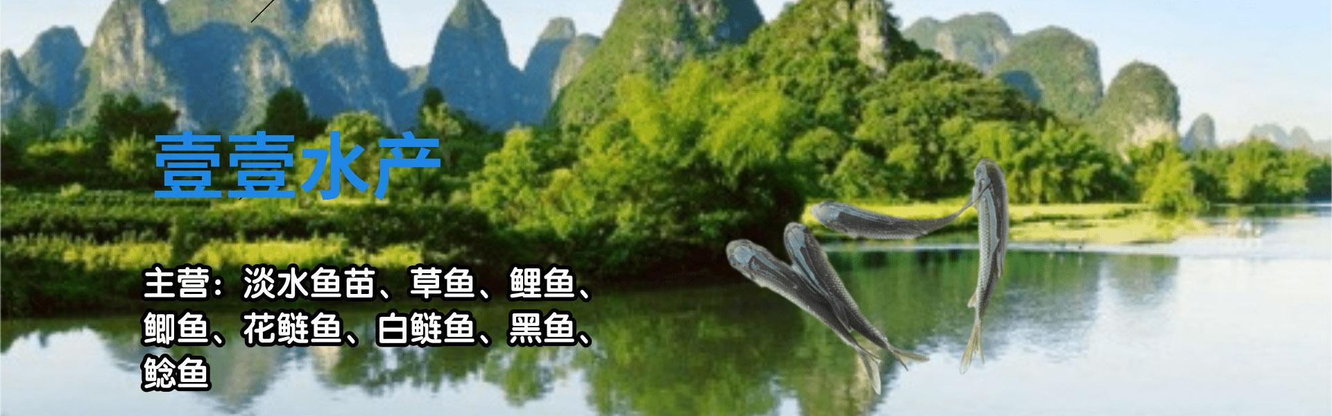故城县壹壹水产养殖场